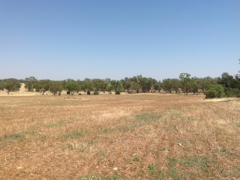 Lot 15 Newell Highway, Peak Hill, NSW 2869