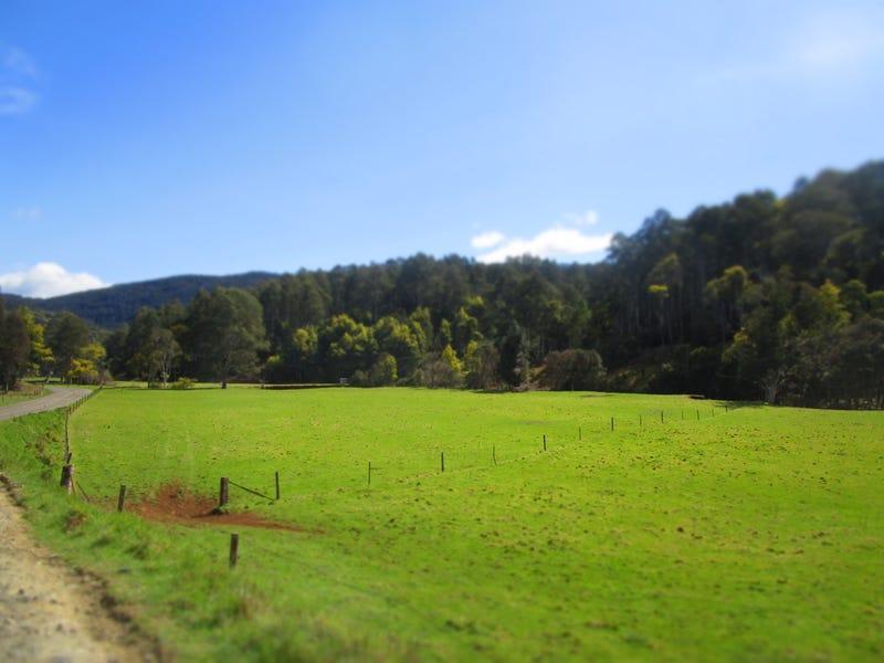 950 Loongana Road, Nietta, Tas 7315