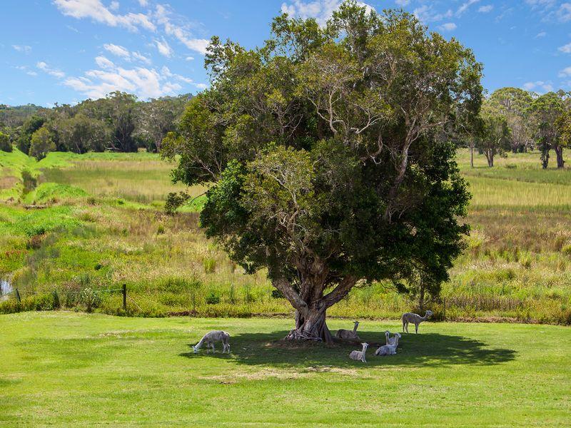 3489 Pacific Highway, Tyagarah, NSW 2481