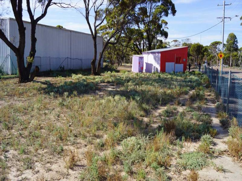 LOT 8 ROGERS STREET, Salmon Gums, WA 6445