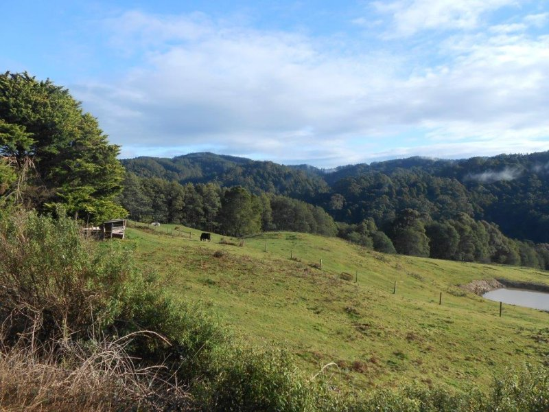 295 Mount Best Tin Mine Rd, Toora North, Vic 3962