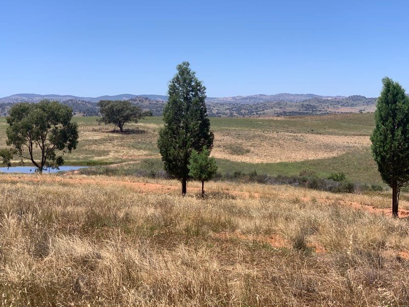 364 Battery Road (Mount Collins), Cowra, NSW 2794