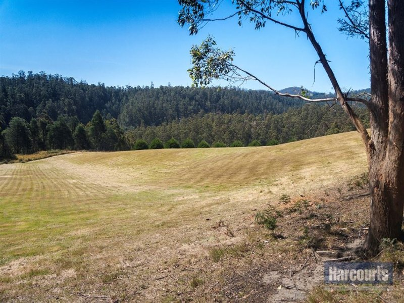 Lot 1 Arthurs Road, Pelverata, Tas 7150