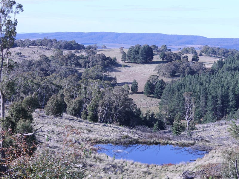 Lot 38 South Forest Way Kindervale, Braidwood, NSW 2622