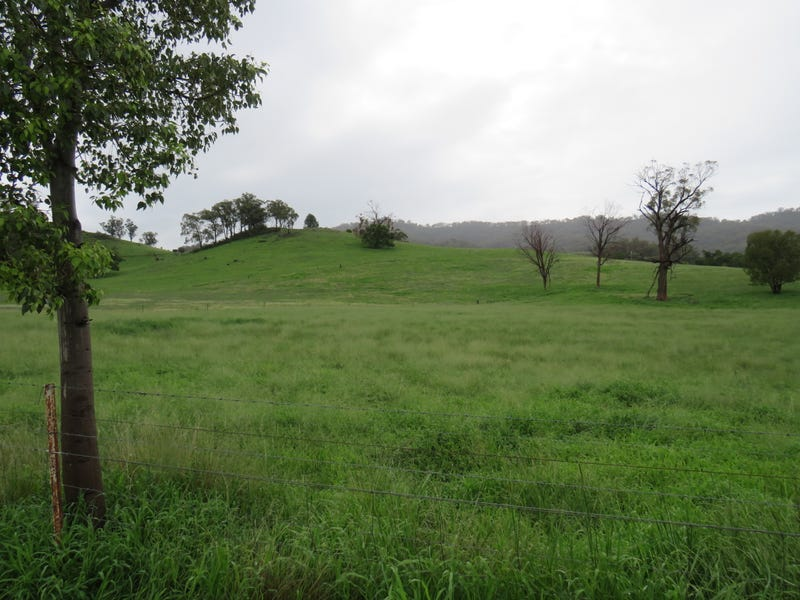 299 Echo Hills Road, Dungowan, NSW 2340