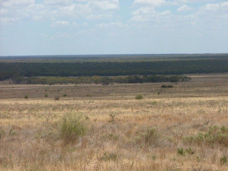 Lot 242 & 247 Quarry, Black Hill, SA 5353