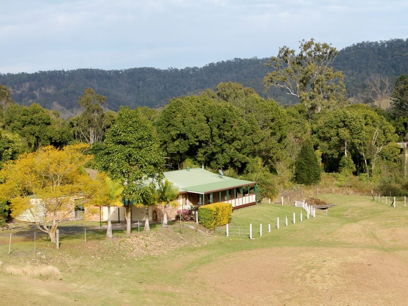 99 Lynches Creek Road, Wiangaree, Kyogle, NSW 2474