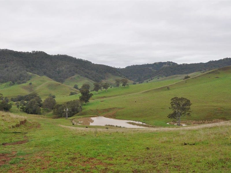 "1662 Sandy Creek Rd, ""Quince Tree"", McCullys Gap via, Aberdeen, NSW 2336"