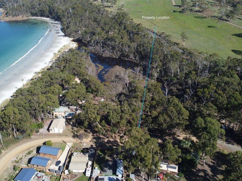 Lot 1 Big Roaring Beach Road, Surveyors Bay, Tas 7116