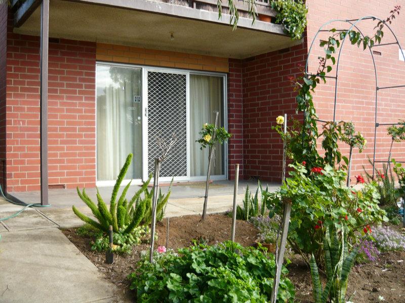 1/1 Henry Street, Rosewater, SA 5013