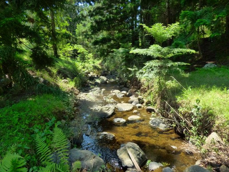 2, Koplick Road, Running Creek, Qld 4287