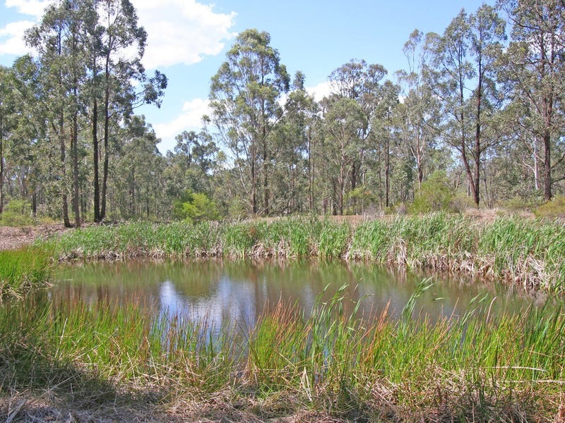Lot 12 Lodge Road, Lovedale, NSW 2325