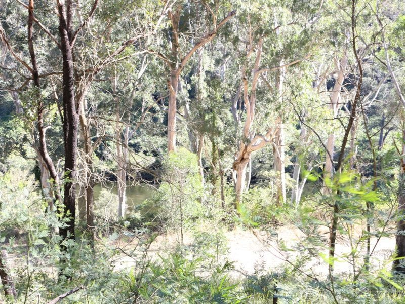 Lot 37 Nowendoc Road, Caffreys Flat, NSW 2424