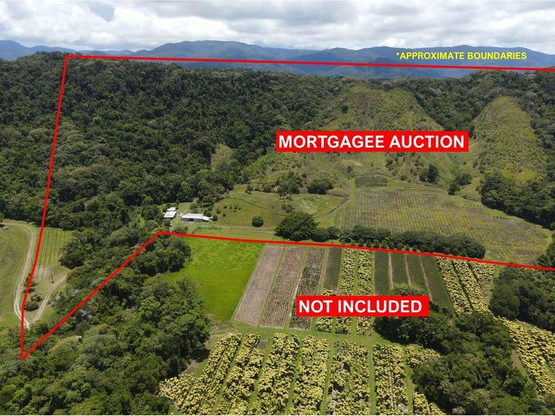 48 Beatrice Rd, Stewart Creek Valley, Qld 4873