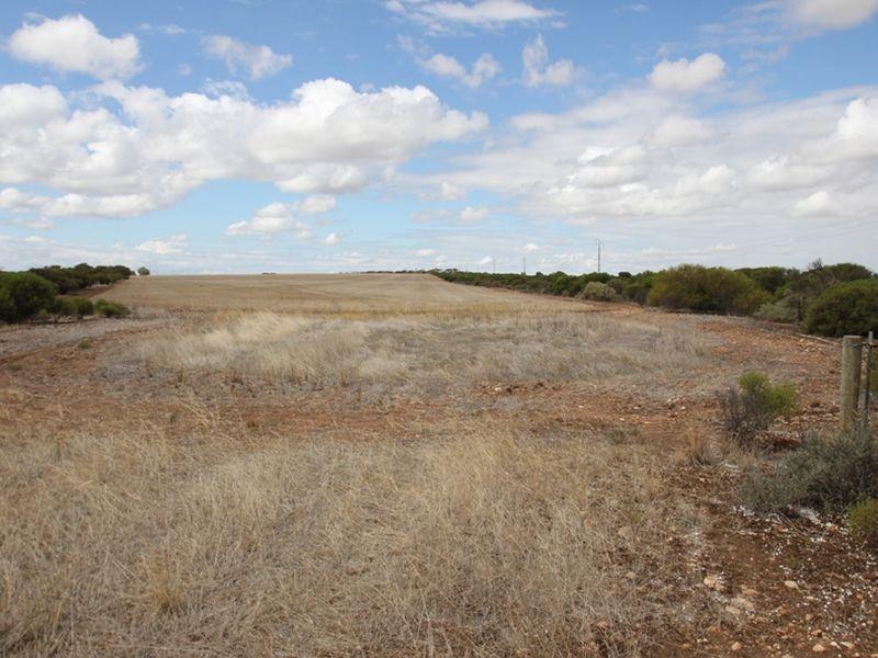 1673 Mines Road, Moonta, SA 5558