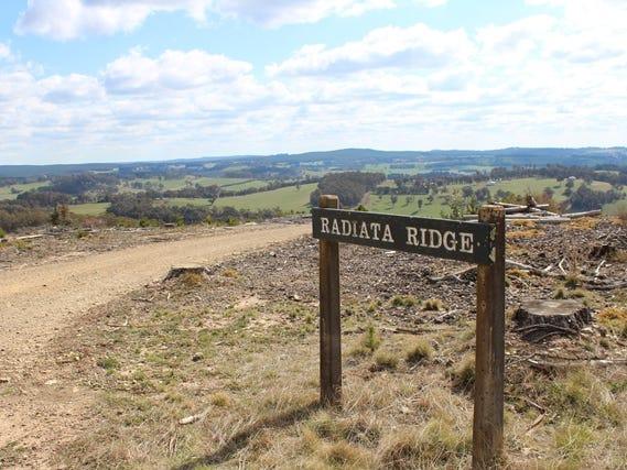 371 Horseshoe Bend Road, Edith, NSW 2787