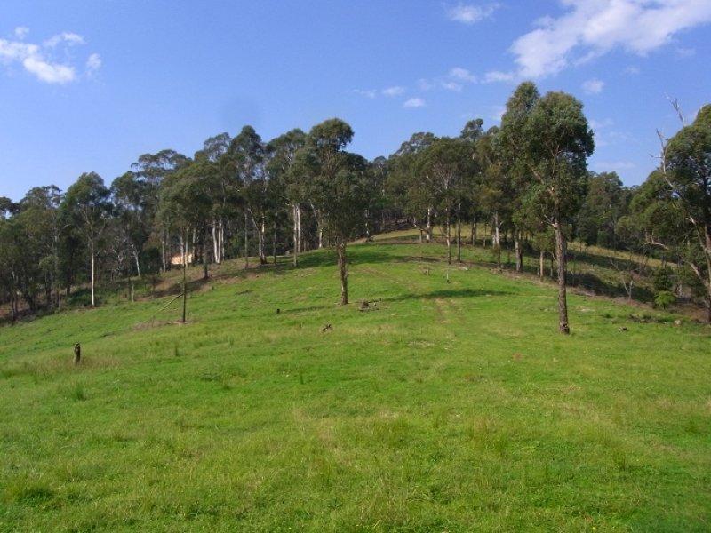 LOT 243 FLORABUNDA LANE, Nethercote, NSW 2549
