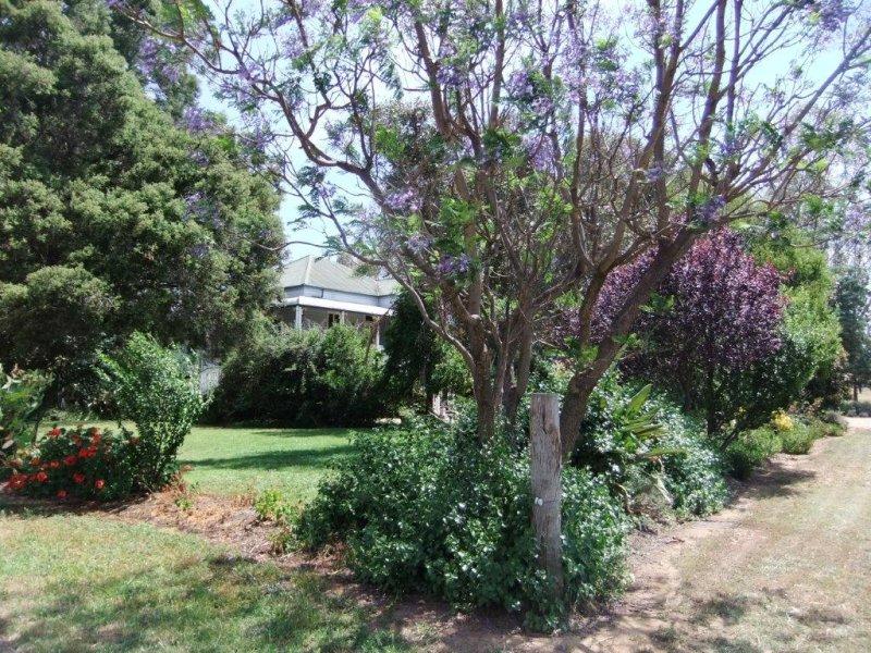 Kataluka Shanley Ln, Gunnedah, NSW 2380