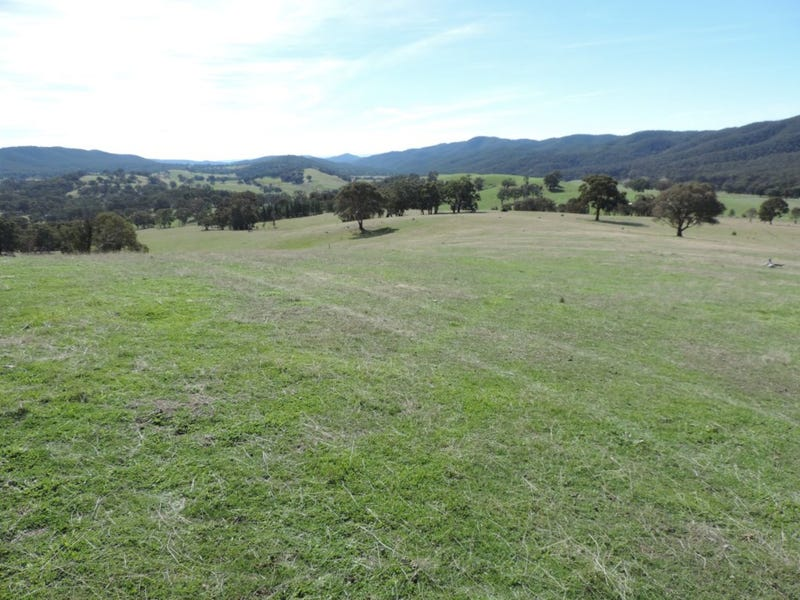 671 Bridge Creek Road, Binda, NSW 2583