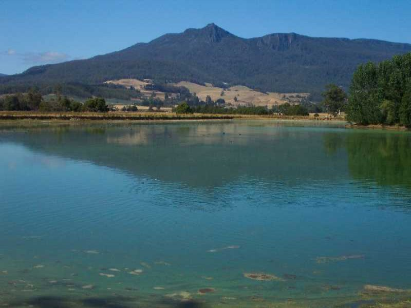Address available on request, Dairy Plains, Tas 7304