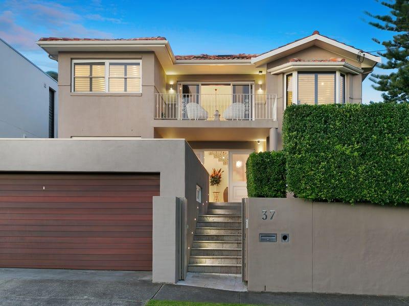 37 Creer Street, Randwick, NSW 2031