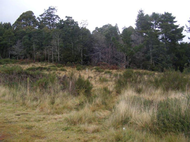 . Upper Natone Road, Upper Natone, Tas 7321