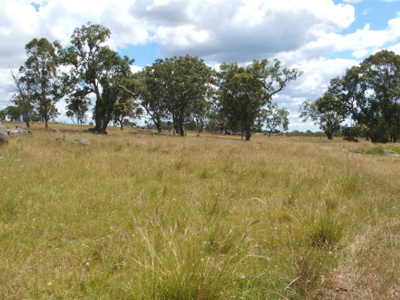 Lot 351, 358 Torrington Road, Stannum, NSW 2371