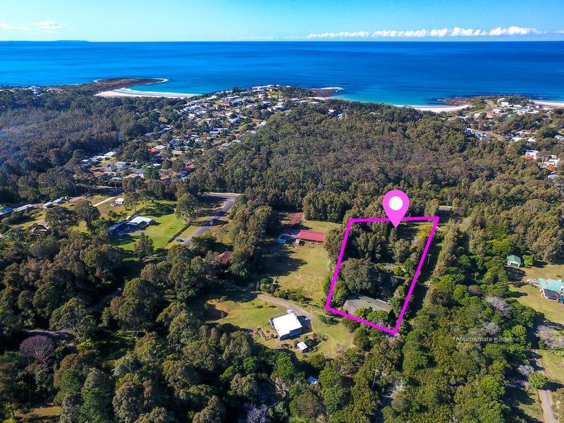 55 Murramarang Road, Bawley Point, NSW 2539