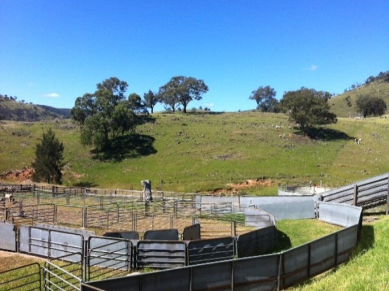 LOT 49 Hill End Road, Hargraves, NSW 2850