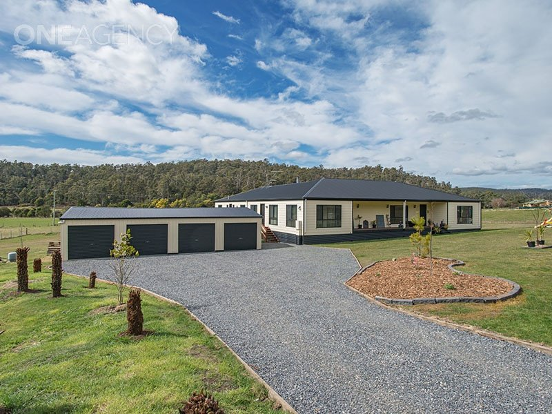 185 Lewis Road, Pipers River, Tas 7252