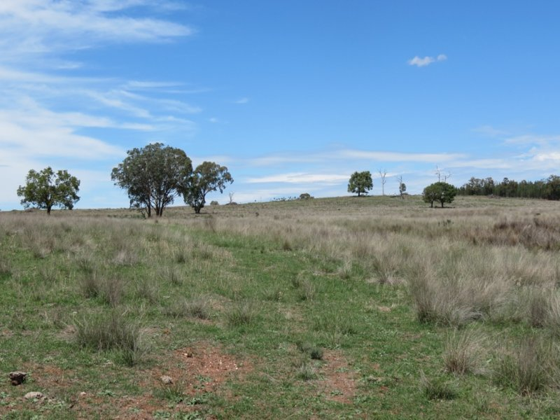 Woolgrove Gundy Creek Rd, Tooraweenah, NSW 2817