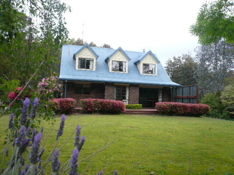 267 Allisons Road, North Motton, Tas 7315