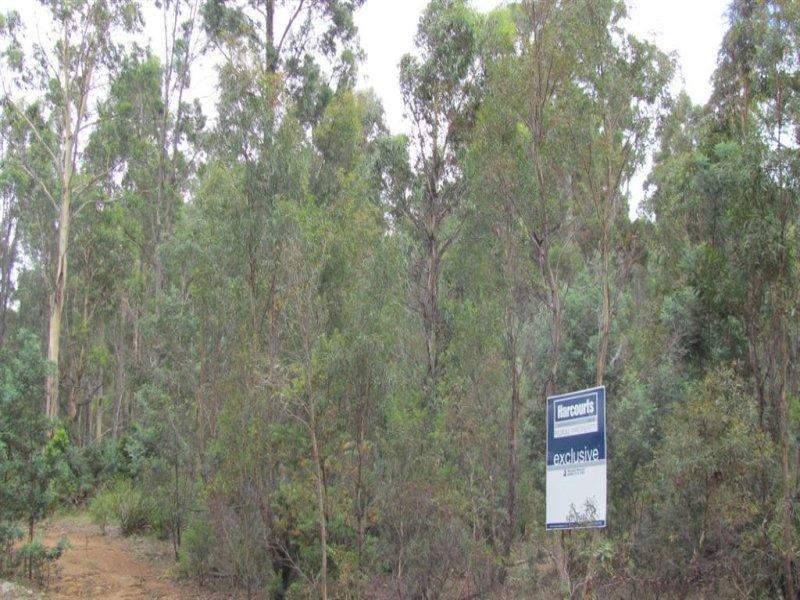240 Prossers Road, Nunamara, Tas 7259