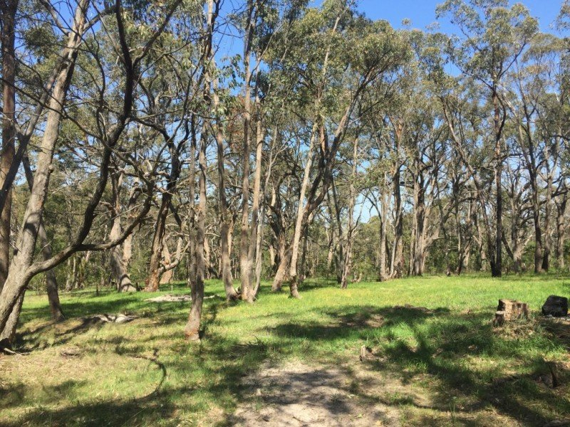 Lot 4, Silverwattle Drive, Invermay, Vic 3352
