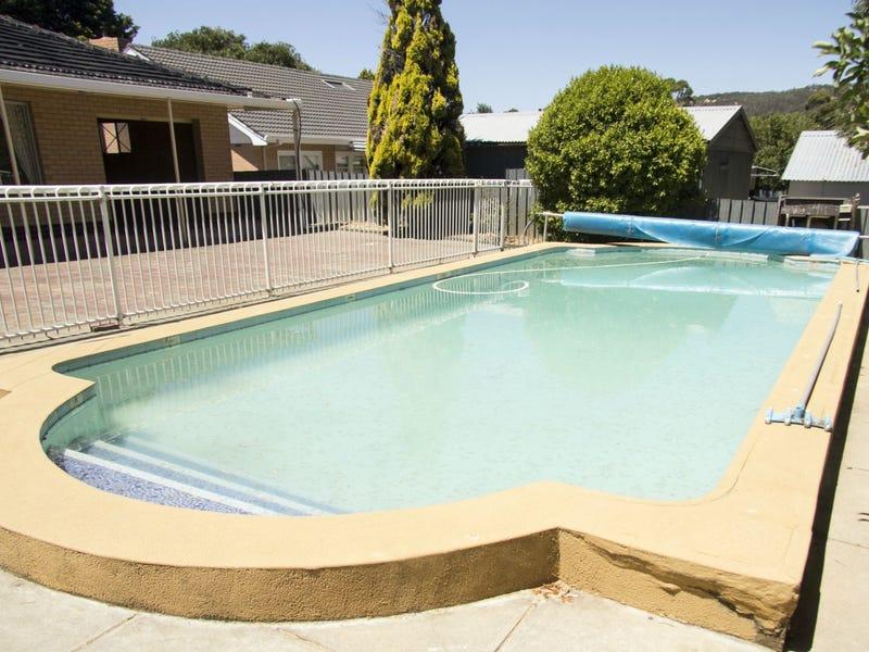 31 Launceston Avenue, Banksia Park, SA 5091