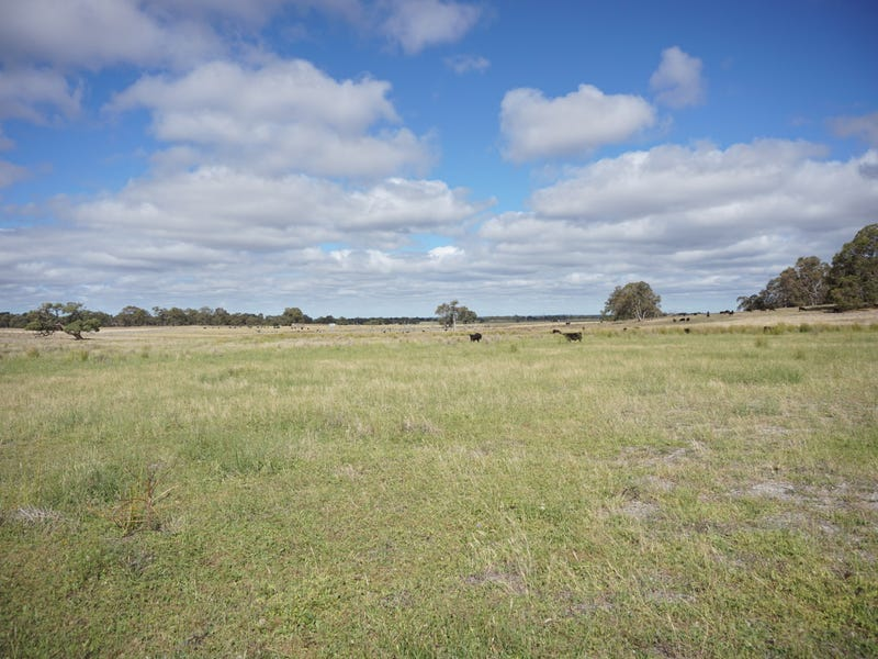 372 Fynes Road, Red Gully, WA 6503