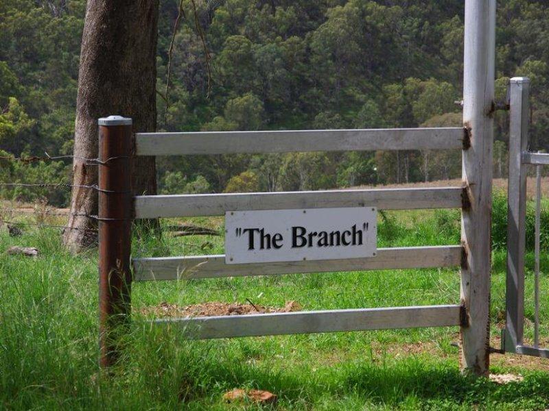 Branch Creek Road, Timor, NSW 2338