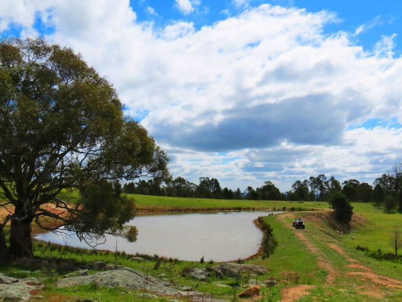 401 Gelston Park Road, Gelston Park, NSW 2650