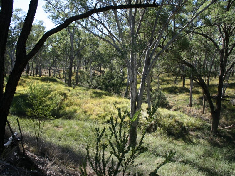 Lot 79 Myall Park Rd, Miles, Qld 4415