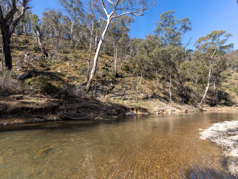 377 Sheepstation Forest Road, Gingkin, NSW 2787