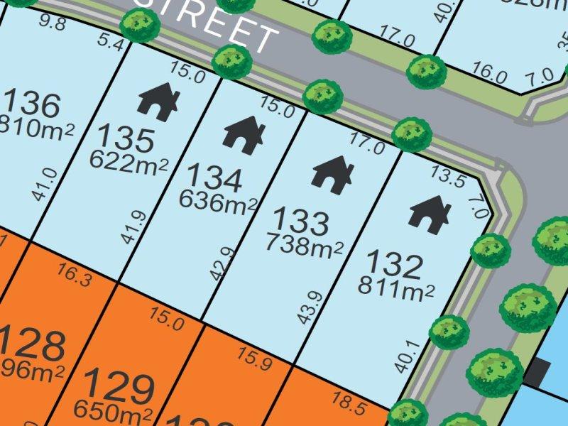 Lot 134, Birdwood Street, Chisholm, NSW 2322