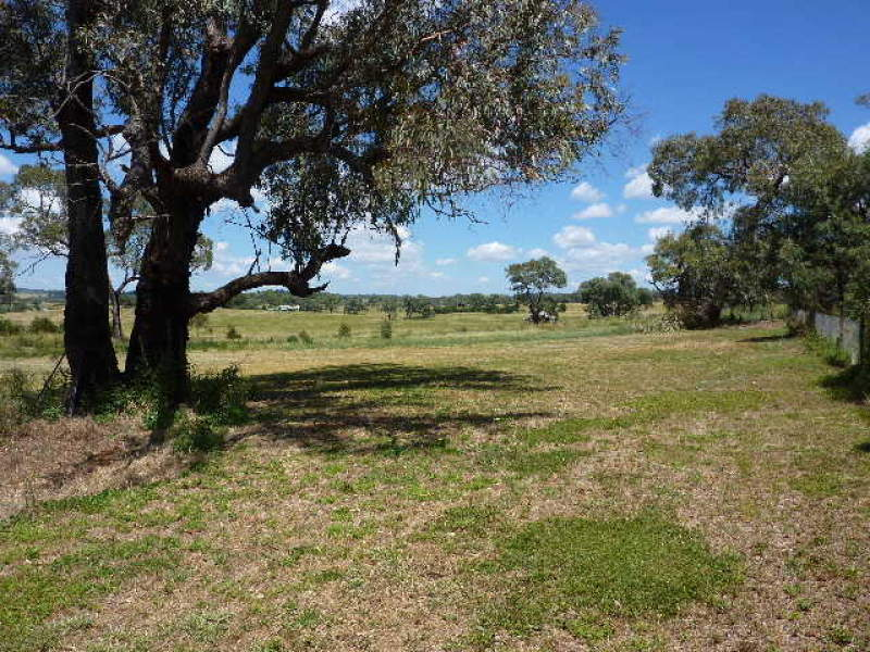 148 Back Saleyards Road, Molong, NSW 2866