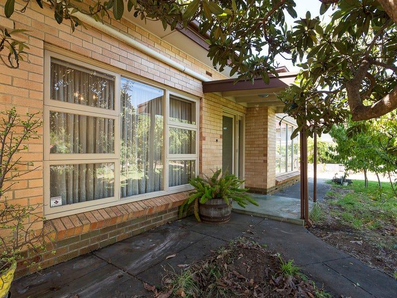 3 Kapunda Terrace, Payneham, SA 5070