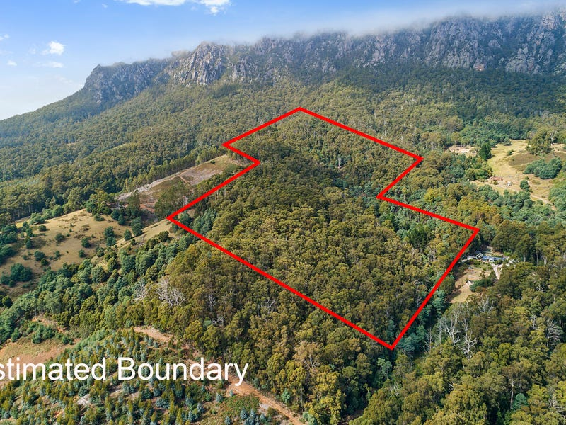 117 Wildlife Road, Claude Road, Tas 7306