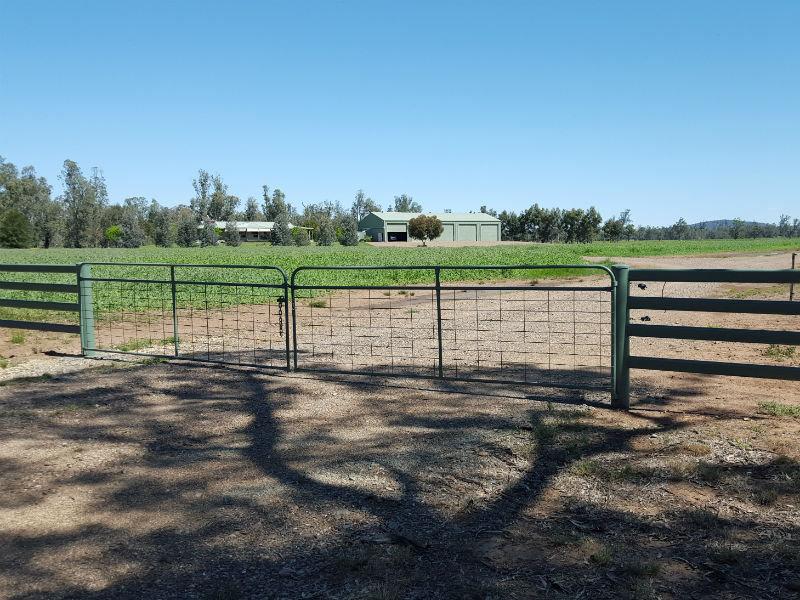 Bayview, 409 Old Bluevale Road, Gunnedah, NSW 2380