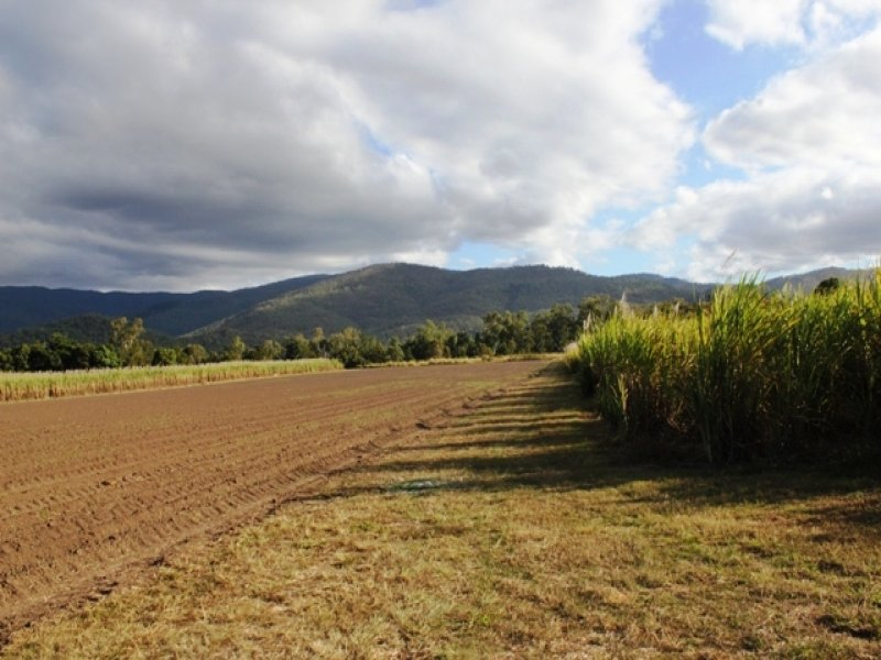 Lot 2 Scrubview Road, Ingham, Qld 4850