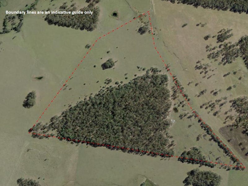 Lot 19 Tullymorgan Road, Tullymorgan, NSW 2463