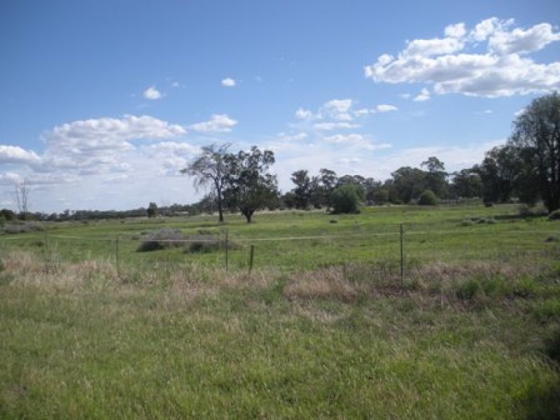 Lot 396 Bulgandramine Road, Peak Hill, NSW 2869
