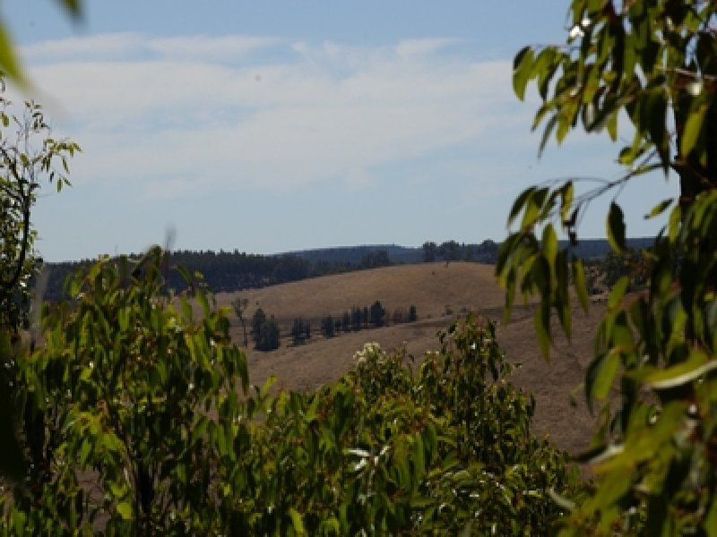 Lot 12582 Gold Gully Road, Nannup, WA 6275