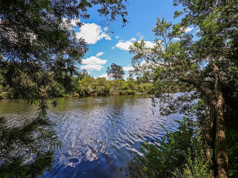 3774 Armidale Road, Nymboida, NSW 2460